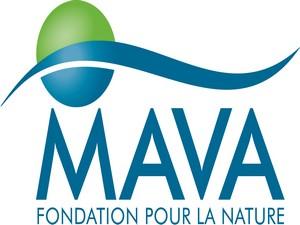 5fondation_mava