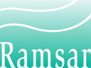 9RAMSAR-logo