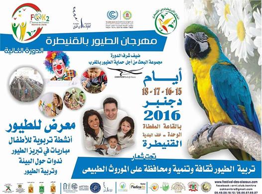 festival des oiseaux